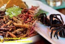Photo of Las 3 comidas más exóticas de Sudamérica
