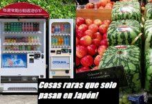 curiosidades japon cosas raras